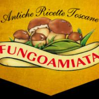 Fungoamiata